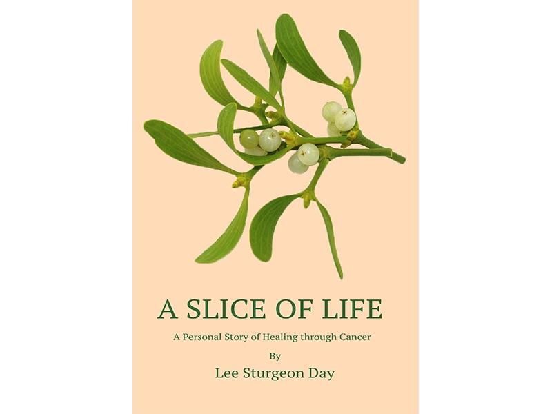 Slice book image