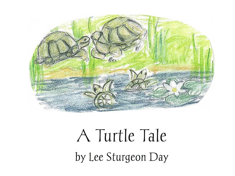 Turtle tale book image